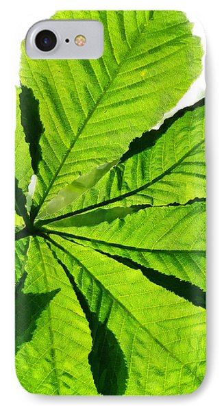 IPhone Case featuring the photograph Sun On A Horse Chestnut Leaf by Steve Taylor