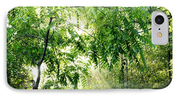 Sun Rays Through Black Walnut Leaves Phone Case by Thomas R Fletcher