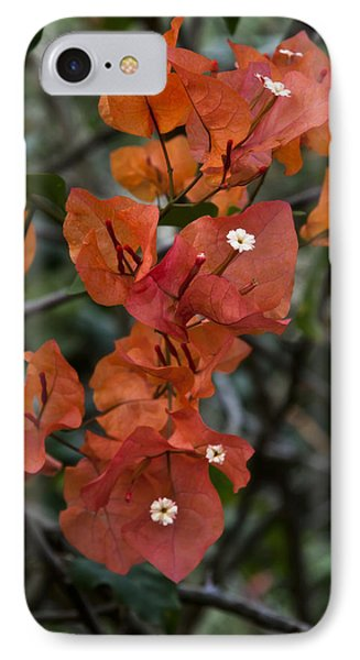 IPhone Case featuring the photograph Sundown Orange by Steven Sparks