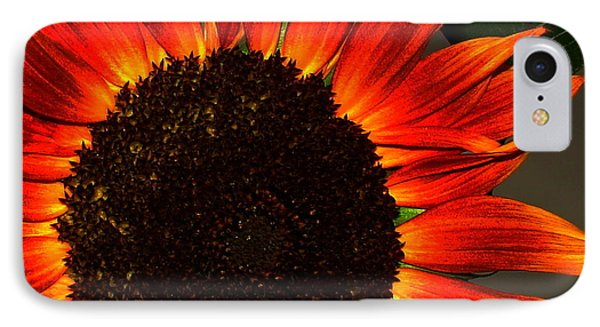 IPhone Case featuring the photograph Sunfire by Ramona Johnston
