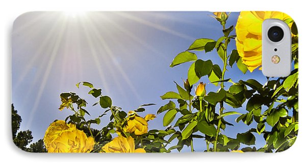Sunflare And Yellow Roses Phone Case by Amber Flowers