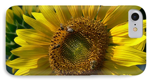 Sunflower 4 Phone Case by EricaMaxine  Price