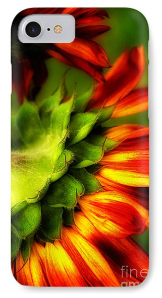 IPhone Case featuring the photograph Sunflower  by Alana Ranney