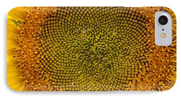 Sunflower Center Phone Case by Darleen Stry