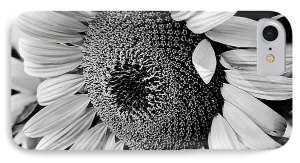 IPhone Case featuring the photograph Sunflower by Dan Wells