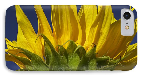 Sunflower Phone Case by Garry Gay