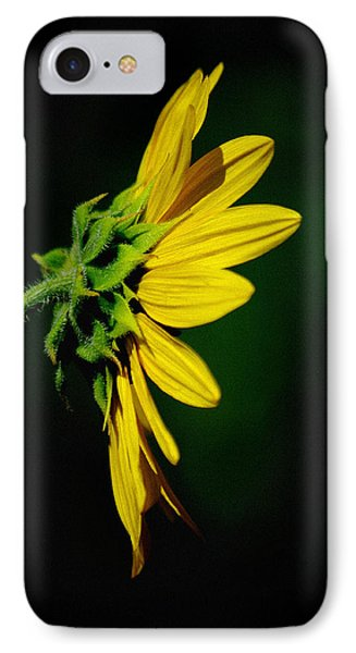 IPhone Case featuring the photograph Sunflower In Profile by Vicki Pelham
