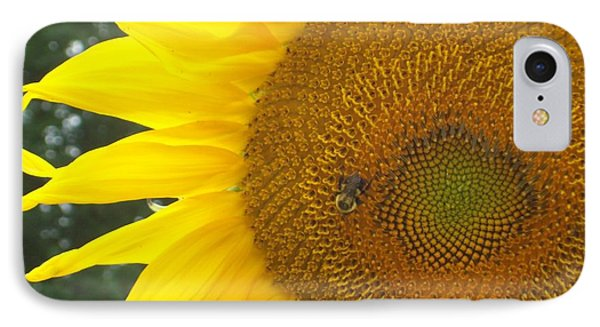 IPhone Case featuring the photograph Sunflower by Lou Ann Bagnall