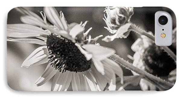 IPhone Case featuring the photograph Sunflower by Sherry Davis