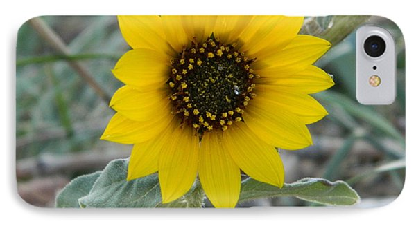 Sunflower Smile Phone Case by Sara  Mayer