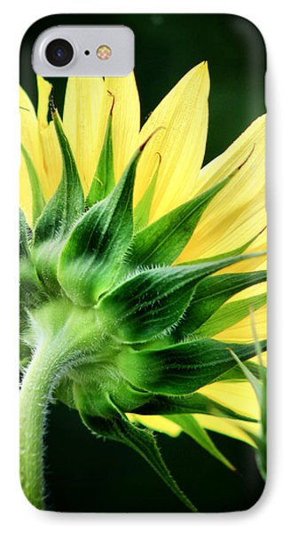 IPhone Case featuring the photograph Sunflower With Bee by Lynne Jenkins