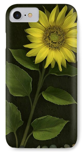Sunflower With Rocks Phone Case by Deddeda