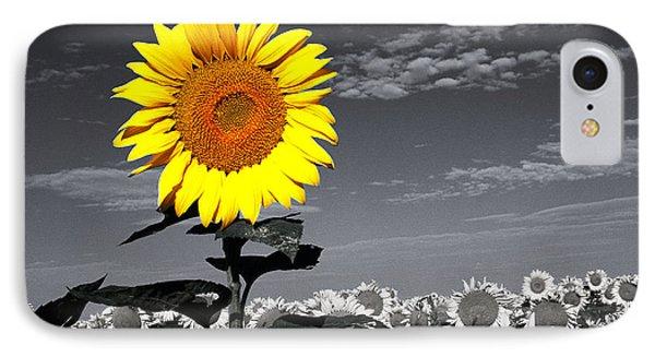 Sunflowers 1 Phone Case by Sumit Mehndiratta