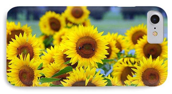 Sunflowers Phone Case by Paul Ward
