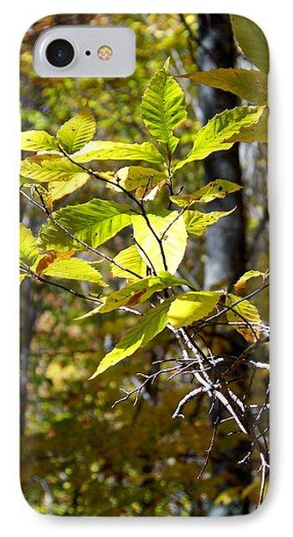 Sunlight On Leaves IPhone Case by Robin Regan