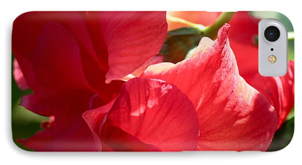 Sunlight On Red Hibiscus IPhone Case by Carol Groenen
