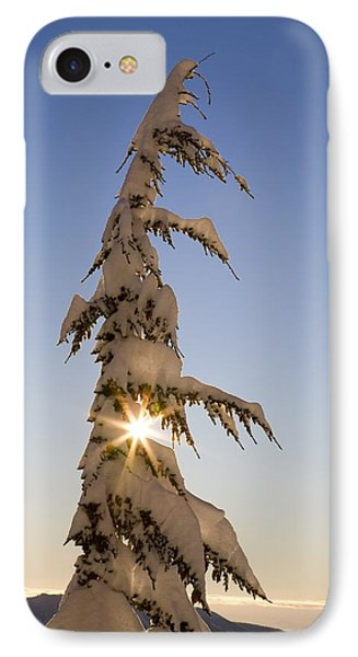 Sunlight Through Snow-covered Tree Phone Case by Craig Tuttle