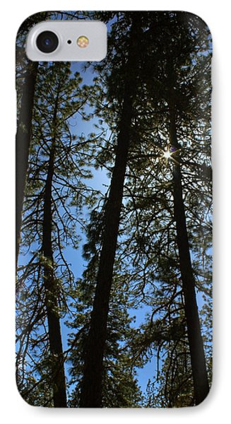 Sunlight Through The Pines IPhone Case by Tyra  OBryant