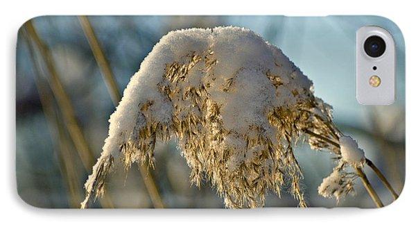 Sunny Day Snow Fall On The Bull Rushes Phone Case by LeeAnn McLaneGoetz McLaneGoetzStudioLLCcom