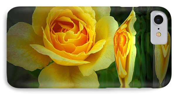 Sunny Delight And Vase 2 Phone Case by Joyce Dickens