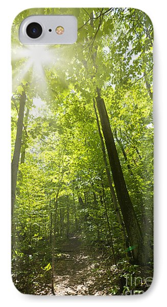 Sunny Forest Path Phone Case by Elena Elisseeva