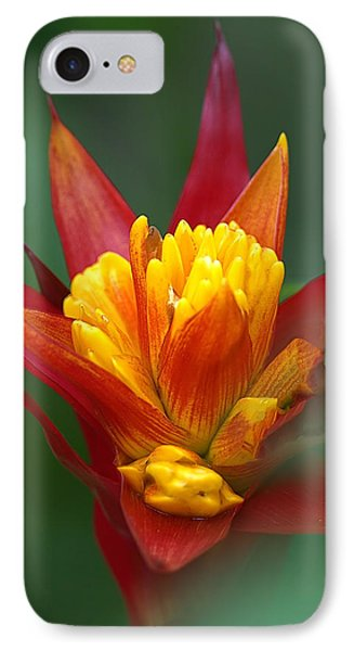 IPhone Case featuring the photograph Sunrise - Sunset by Anne Rodkin