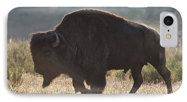 Sunrise Buffalo IPhone Case by D Robert Franz