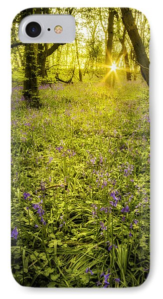 Sunrise In Bluebell Woods Phone Case by Amanda Elwell