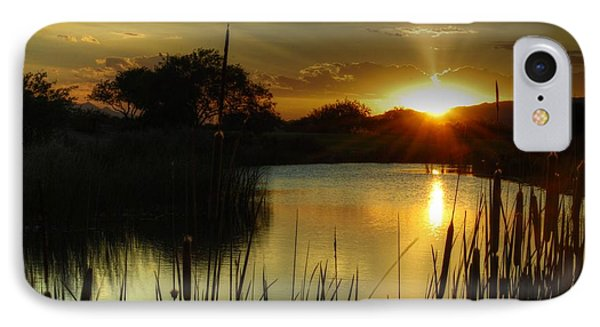 Sunset And Cattails Phone Case by Tam Ryan
