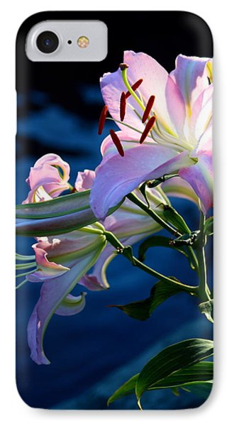 IPhone Case featuring the photograph Sunset Lily by Patrick Witz