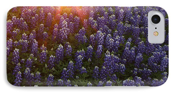 Sunset Over Bluebonnets IPhone Case