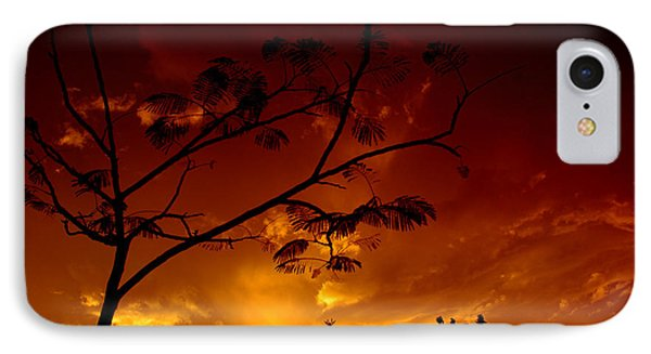 Sunset Over Florida IPhone Case