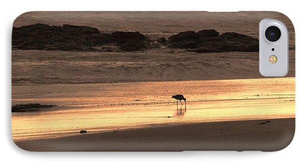 Sunset Shimmer Beach Phone Case by Debra     Vatalaro