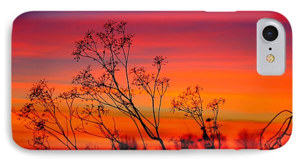 Sunset Silhouette IPhone Case by Patrick Witz