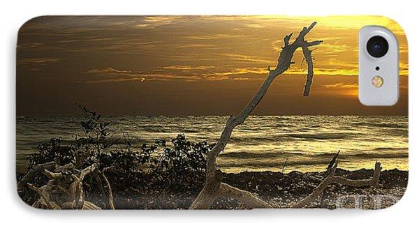 Sunset West II Phone Case by Bruce Bain