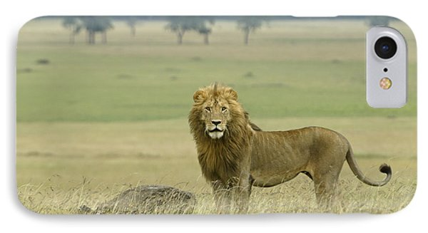 Surveying His Kingdom Phone Case by Michele Burgess