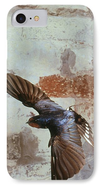 Swallow In Flight Phone Case by Andy Harmer