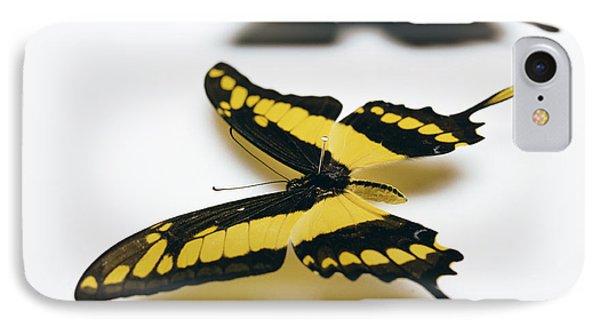 Swallowtail Butterflies Phone Case by Lawrence Lawry