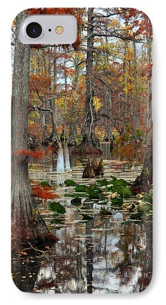Swamp In Fall Phone Case by Marty Koch