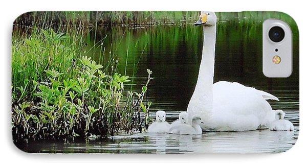 Swan Family Late Summer Phone Case by Colette V Hera  Guggenheim