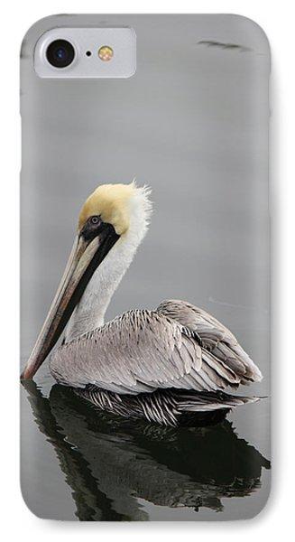 Swan Of The Gulf Coast IPhone Case by Deborah Hughes