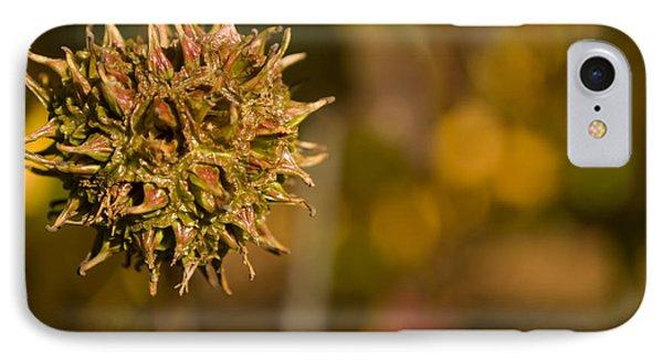 Sweetgum Seed Pod Phone Case by Heather Applegate