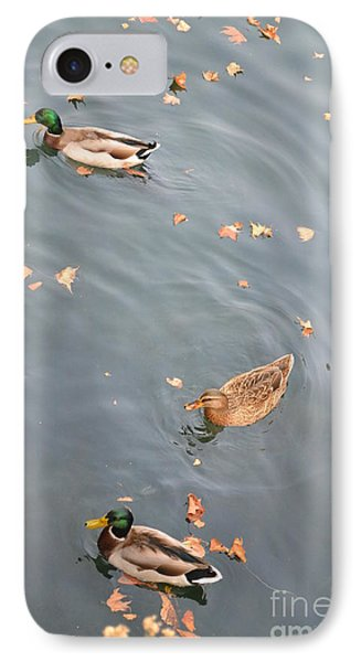 Swimming Ducks And Autumn Leaves IPhone Case by Kathleen Pio