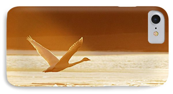 Takeoff At Sunset Phone Case by Larry Ricker