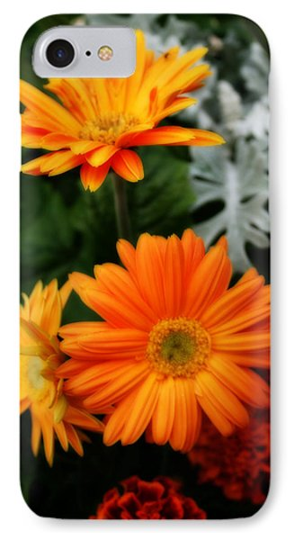 Tangerine Colored Gerbera Daisies Phone Case by Kay Novy