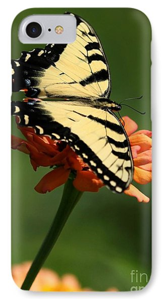 Tantalizing Tiger Swallowtail Butterfly Phone Case by Sabrina L Ryan