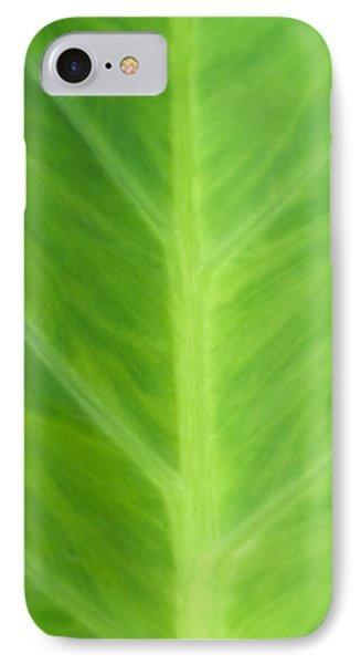 Taro Or Elephant Ear Leaf IPhone Case by Denise Beverly