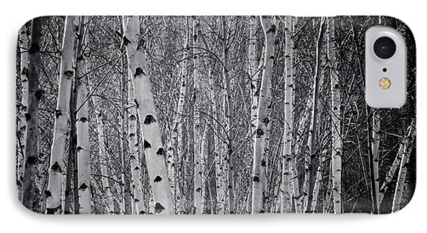 Tate Modern Trees IPhone Case by Lenny Carter