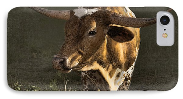 Texas Longhorn # 4 IPhone Case by Betty LaRue