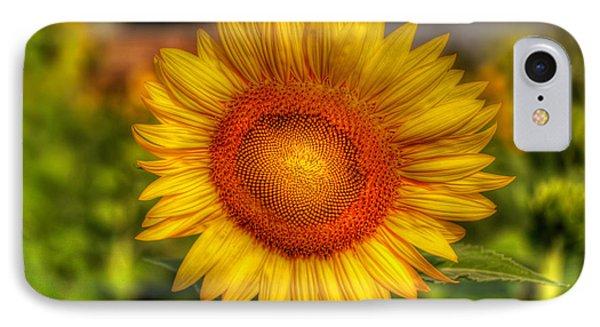 Thai Sunflower Phone Case by Adrian Evans